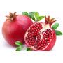 15 Sementes Do Raro Romã Vermelho Gigante + Frete Grátis