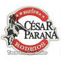 Patch Bordado Cesar Parana 7,5x9cm Rodeio Montaria Rod23