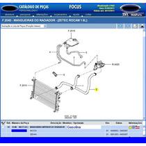 Mangueira Inferior Do Radiador Focus 1.6 Gasolina 03a07