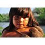 Tainá 3 * A Origem * Amazônia * Dvd * Frete Grátis Brasil