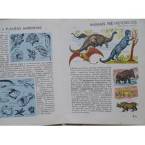 Livro Enciclopédia Ilustrado Antigo Anos 70 História