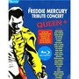 Blu-ray The Freddie Mercury Tribute Concert - C/ Luva