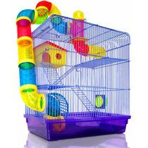 Gaiola Labirinto 3and Hamster - Frete Grátis