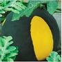 10 Sementes Melancia Negra Amarela Super Doce - Frete Grátis