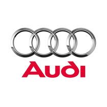 Braço Oscilante Traseiro Lado Direito Audi A4/ A6/ Passat