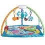 Ginásio Fisher Price Musical Fundo Do Mar Mattel - Tutitoys