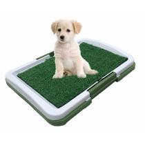 Sanitario Canino Higienico Caes Cachorro Bandeja Lavavel