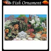 Painel Fundo De Aquario Boyu J01 40cm Fish Ornament
