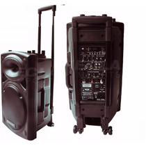 Ecopower Ep1292 450wrms 2 Mic Sem Fio Vhf