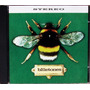 Cd Single - Bluetones - Slight Return (importado) Blur Oasis