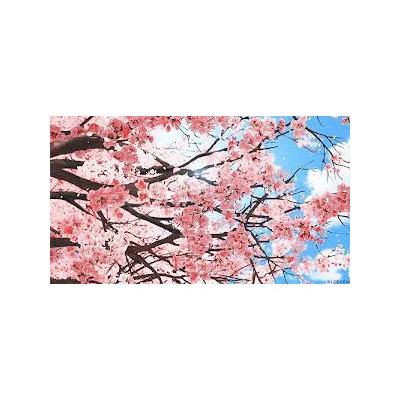 Cerejeira mudas