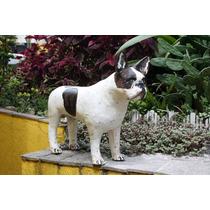 Escultura Do Seu Bulldogue