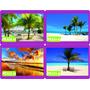Adesivo Decorativo Praia Palmeira Barco Sol Promoção Ca