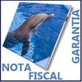 Tela Notebook 14.1 Lcd Hp Compaq Cq40 Cq45 Pronta Entrega