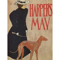 Mulher Cachorro Animal Adestrando Poster Repro