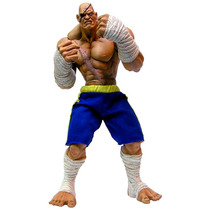Street Fighter - Sagat - Sota Toys - Unico No Ml - 26 Cm