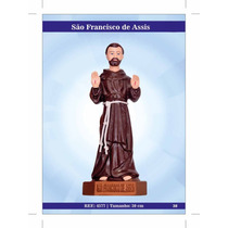 Imagens De Santos Católicos - São Fran. De Assis De Borracha