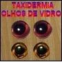 Olhos De Vidro Importados Para Taxidermia