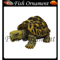 Soma 040340 Enfeite Resina Tartaruga Da Índia Fish Ornament