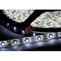 Fita Led Branco Frio Rolo Super Promoção - Smd 3528 - Ip20
