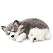 Filhote Perfect Petzzz Cachorro Husk Siberiano Que Respira