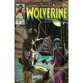 Comic: Marvel Comics Presents Wolverine #40 - Bonellihq