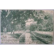 Postal Rio De Janeiro 1914 - Quinta Da Bôa Vista