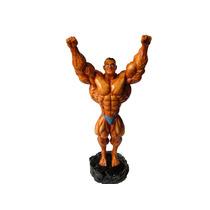 Boneco Resina Vencedor- Academia- Musculação- Halterofilismo