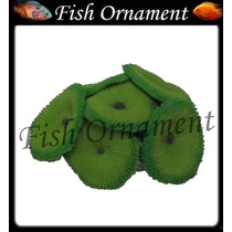 Enfeite Silicone Soma Coral Ricordia Green 2 Fish Ornament