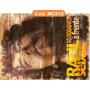 Quadros Rústico Rock Rau Seixas Renato Russo Elvis