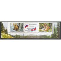 Rússia 2005 Fauna Felino Urso, Série Nova, Mint