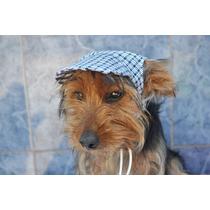 Chapéu Pra Cachorro Dupla Face