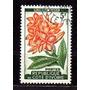 Costa .do Marfim 1961 * Flores * Orquídea (plumeria .rubra)