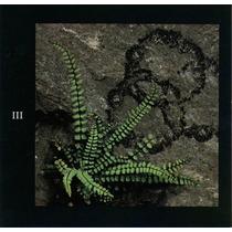 Cd : Led Zeppelin Disc Three - Importado Frete Gratis