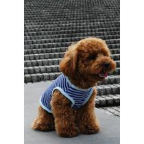 Moldes Roupinhas Diversas Para Cães E Gatos + De 10 Modelos