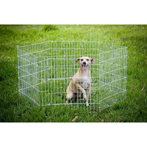 Cercado Canil 6 Lados Cachorro Coelhos Médio Super Promoção