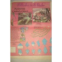 Folhinha De São Paulo- Edição 1193- 13 De Julho De 1986