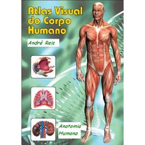 Atlas Visual Do Corpo Humano Ilustrado Em Cores - Anatomia
