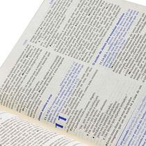 Bíblia De Estudo Ntlh Grande - Feminina - Nova Diagramação