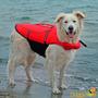 Colete Salva Vidas Para Cães - Trixie - P