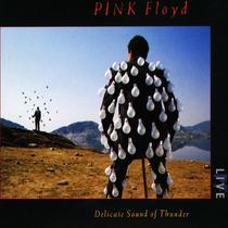 Cd Pink Floyd Delicate Sound Of Thunder [eua] Novo Lacrado