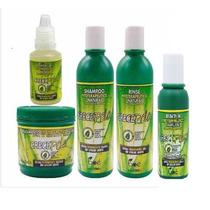 Kit Crece Pelo Shampoo, Mascara, Condicionador, Leavin, Ampo