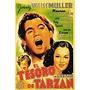 Dvd Filme - O Tesouro De Tarzan
