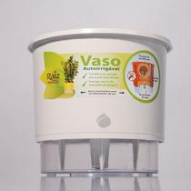 Vaso Com Irrigação - Vaso Para Bonsai - Vaso Ornamental