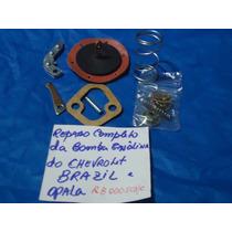 Kits (reparo ) Da Bomba De Gasolina Chevrolet Brasil C10 C14