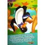 Livro O Dr.pinguim E A Mensagem De Santo Agostinho - Isabel