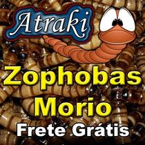 50 Larvas Vivas Zophobas Morio (tenebrio Gigante)