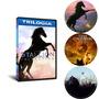 Dvd Coleção  Trilogia O Corcel Negro