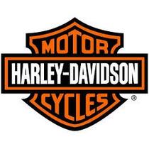 Bico Antifurto Cromado Roda Harley Davidson Dyna Super Glide