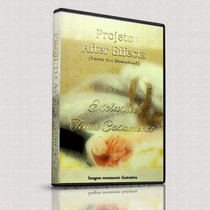 Template After Effects Exclusivo 1231 - Casamento
